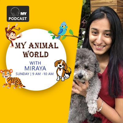 https://myfmindia.com/Admin/shows/animalsday-podcast.jpg